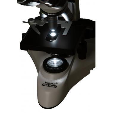 Микроскоп Levenhuk MED 25B, бинокулярный